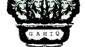 gamiq2014