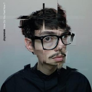 Joywave- How do you feel now?