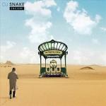 #17- DJ Snake - Encore