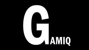 gamiq-2016-sqaure-profil